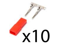 10uds Conector BEC Hembra