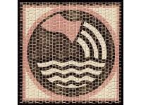 Cuit Mosaico Horóscopo ACUARIO 200x200
