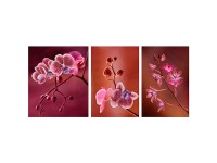 MiniArt Crafts Nature Pink Orchids Triptych