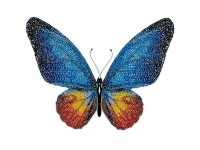 MiniArt Crafts Nature Blue Butterfly